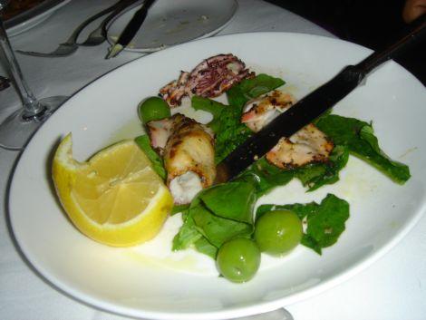Umberto squid