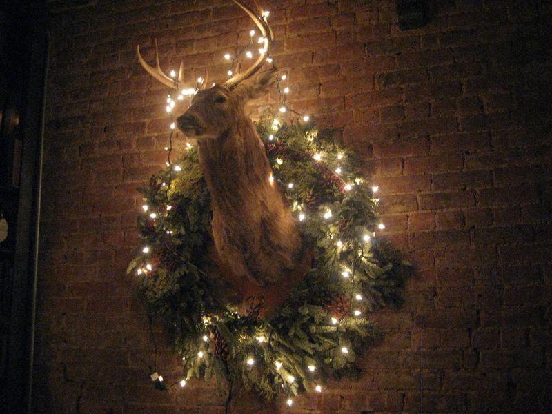 Highlands deer.jpg