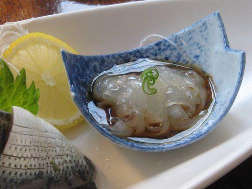 Kanoyama babyeel1