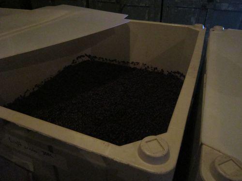 Brooklyn Winery 2 (4)